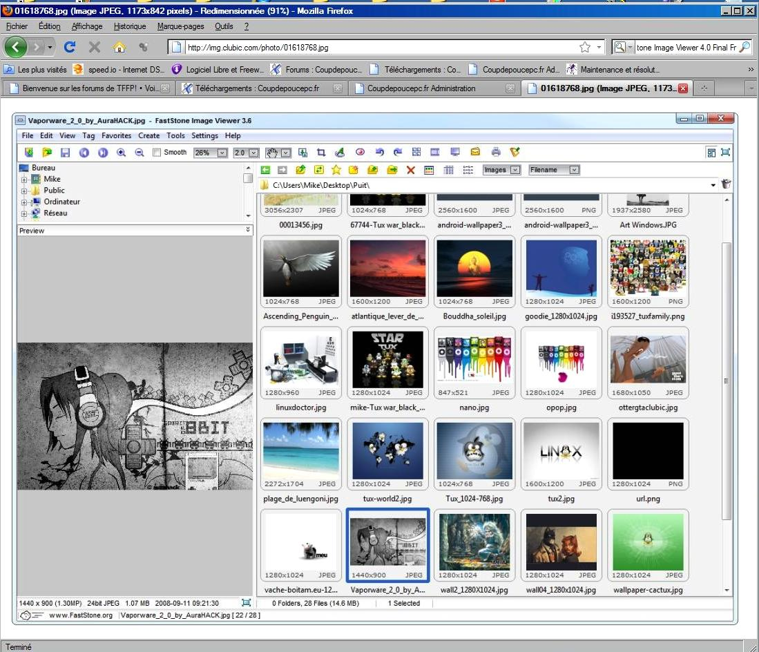 FastStone Image Viewer 4.0 Final Fr